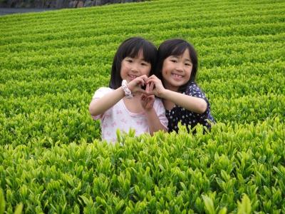 Nagao Tea shop